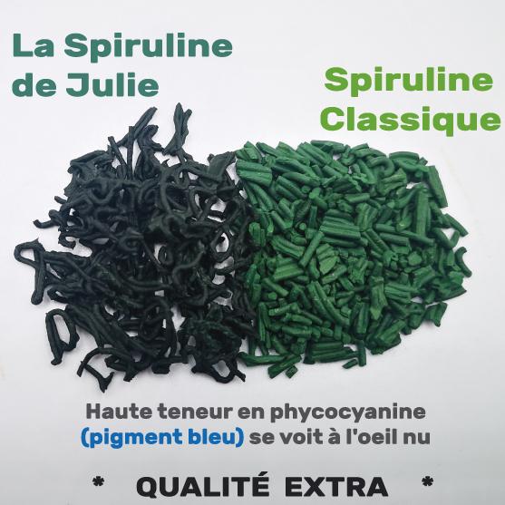 Différence qualité spiruline brindille La spiruline de Julie